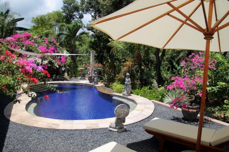 Villa Meliang liang, near Lovina Beach, holiday rental in Tukadmungga