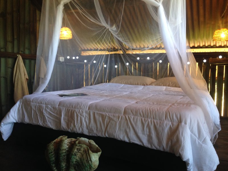King size mosquito net room, second floor, facing each other