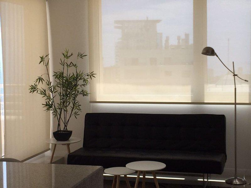 Apartamentos Aqua Spa Reñaca 1210 - Enjoy the Ocean for you, location de vacances à Renaca