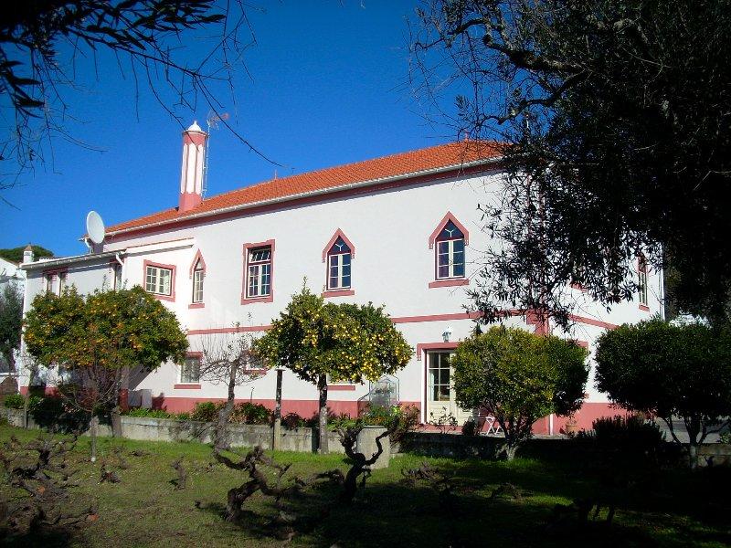 Quinta da Vila Maria viewed from the vineyard