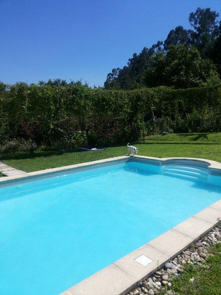 Leiras de Candoz Douro Valley, holiday rental in Fregim