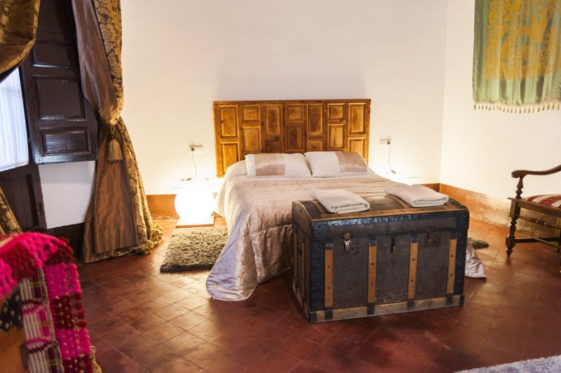 Centro ciudad - Albaycin - Palacio, holiday rental in Granada