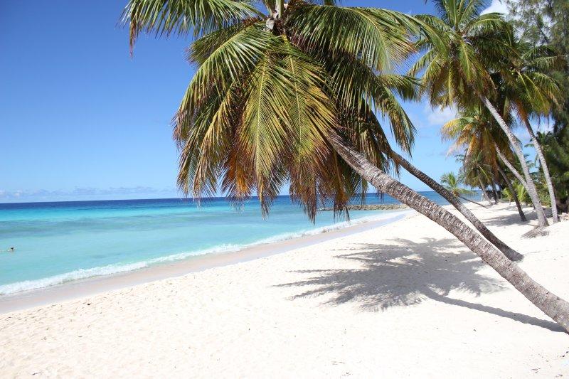 Praia perto