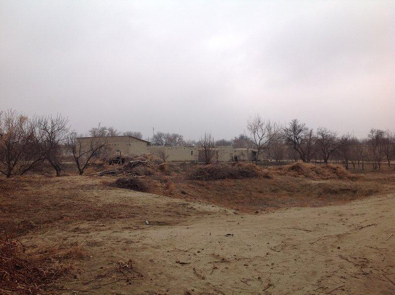 Adiba's Homestay, alquiler de vacaciones en Uzbekistán