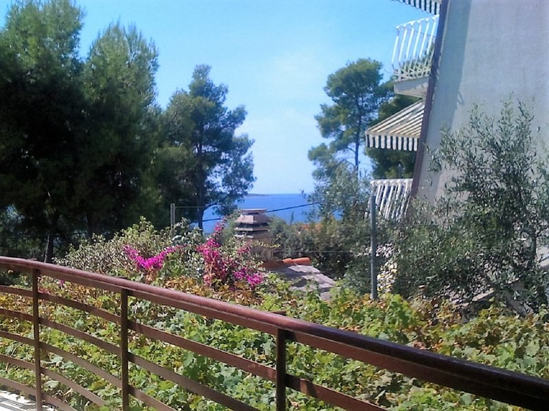 Villa Pelegrin - Zavala, holiday rental in Zavala
