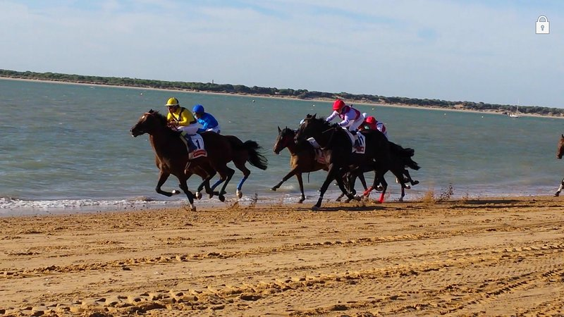 Carreras de caballos de agosto