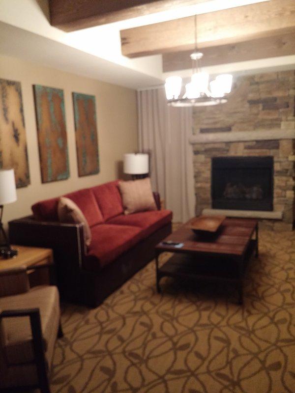 Living Room  (1 bedroom unit)