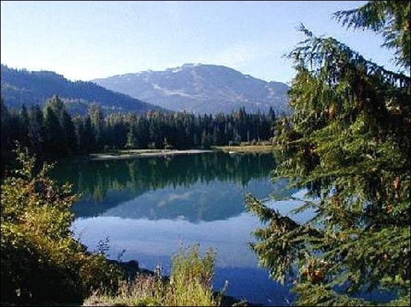 Vista, de, perto, perdido, lago