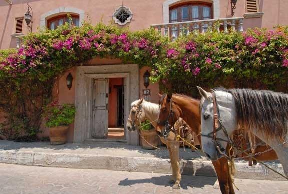 Horseback Riding at Your Front Door!