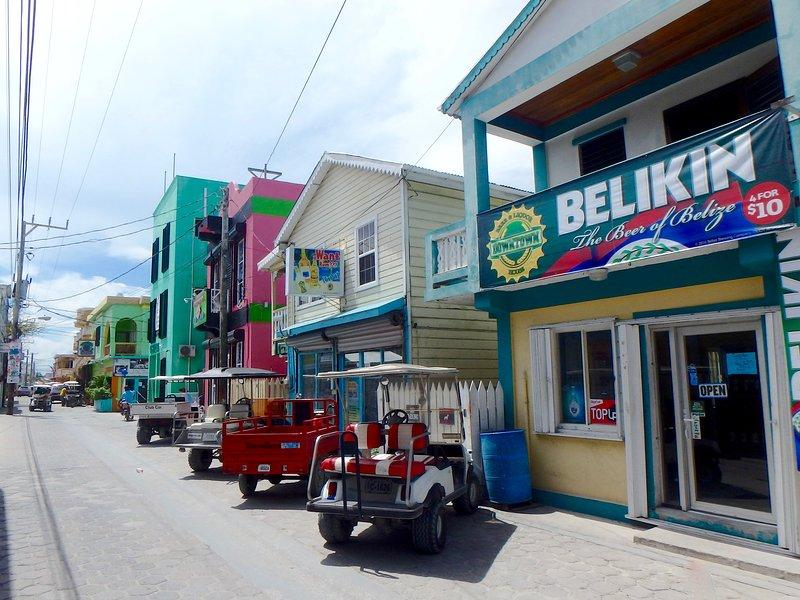 Nette San Pedro Stadt ist nur eine kurze Fahrrad, Golfwagen oder Taxifahrt entfernt! (Oder 40-60 + min Beachwalk)