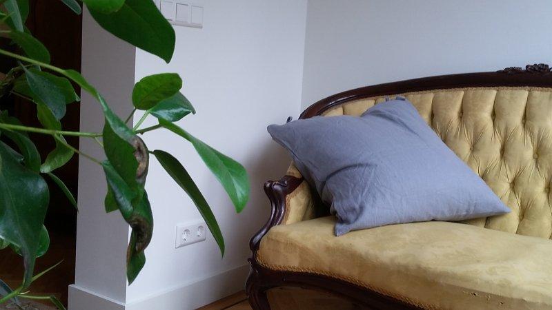 sofa by French windows