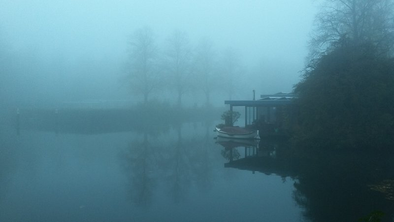 niebla por la mañana, ver en la falta, a 100 m de la carretera