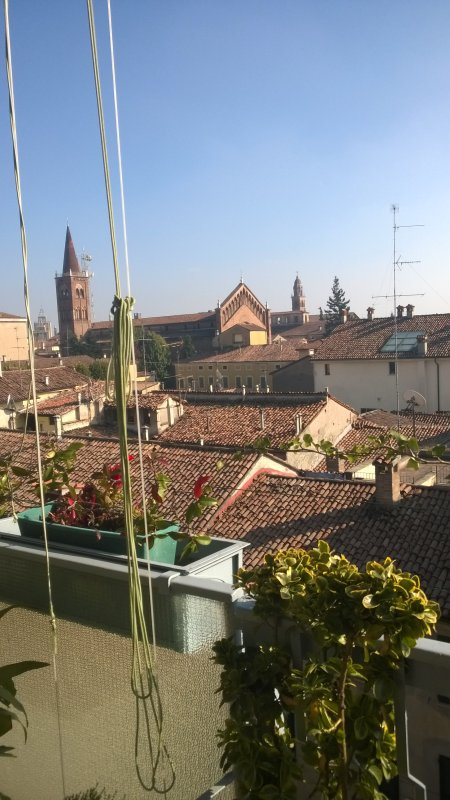 The view over the roofs and the bell towers of the churches of Cremona and Torrazzo