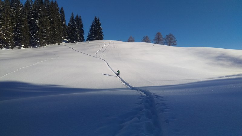 Snowshoeing em Heutal (teimosa)