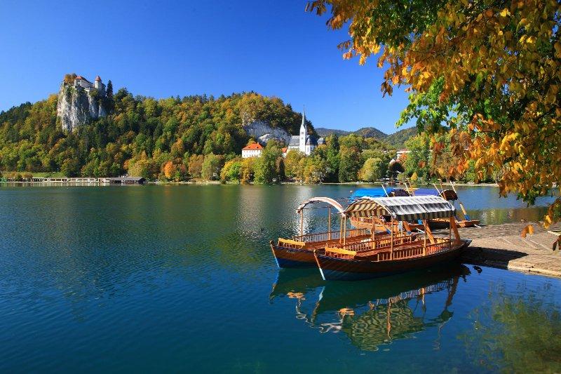 Nur 10 Fahrminuten von der Wohnung entfernt, ist Bleder See in Slowenien bekannteste Touristenattraktion