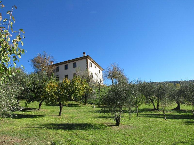 Casa Conti is an old farmhouse located in the Chianti Rufina area of Tuscany. Private Swimming pool.