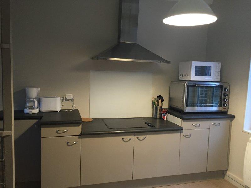 maison familiale avis maison familiale d henri matisse. Black Bedroom Furniture Sets. Home Design Ideas