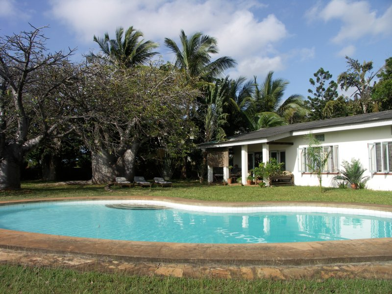 The bungalow and swimming pool