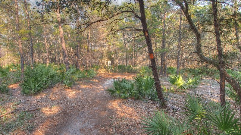 Wonderful Walkways! - Cassiene Gardens has the best walkways to take a hike in the morning before your day starts at the beach!