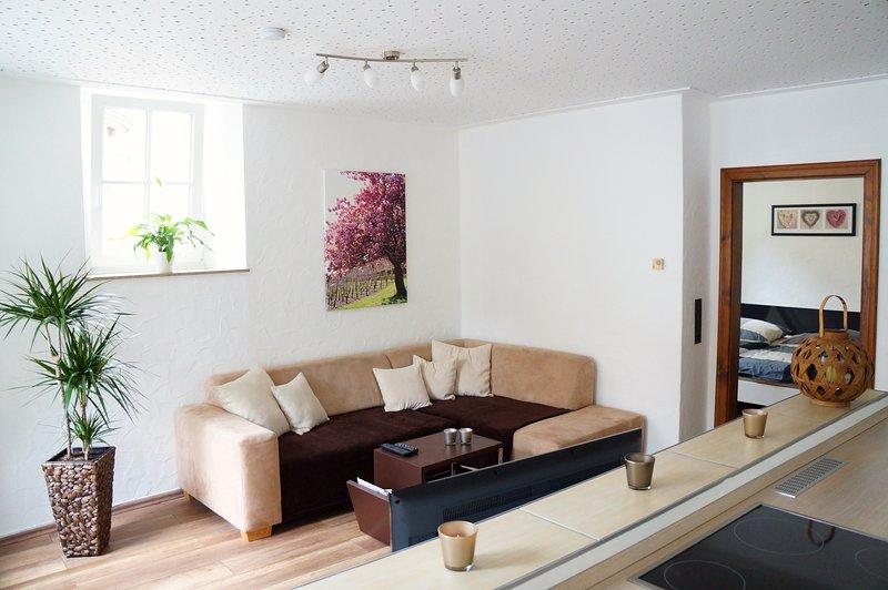 Moderne und ruhige Ferienwohnung im Herzen von Ürzig, holiday rental in Neuerburg