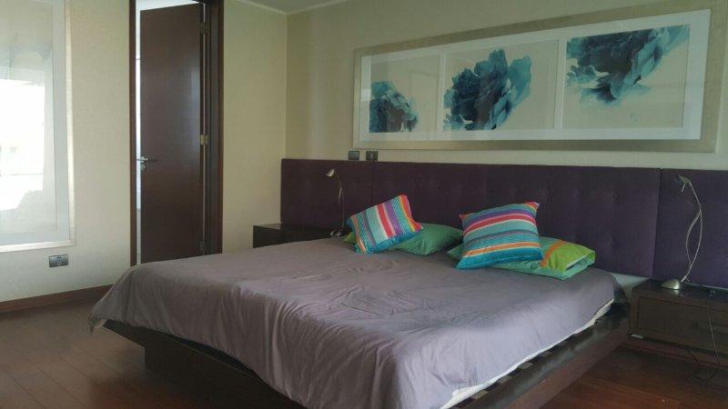 Great apartment close to Parque Bicentenario, holiday rental in Lo Solar