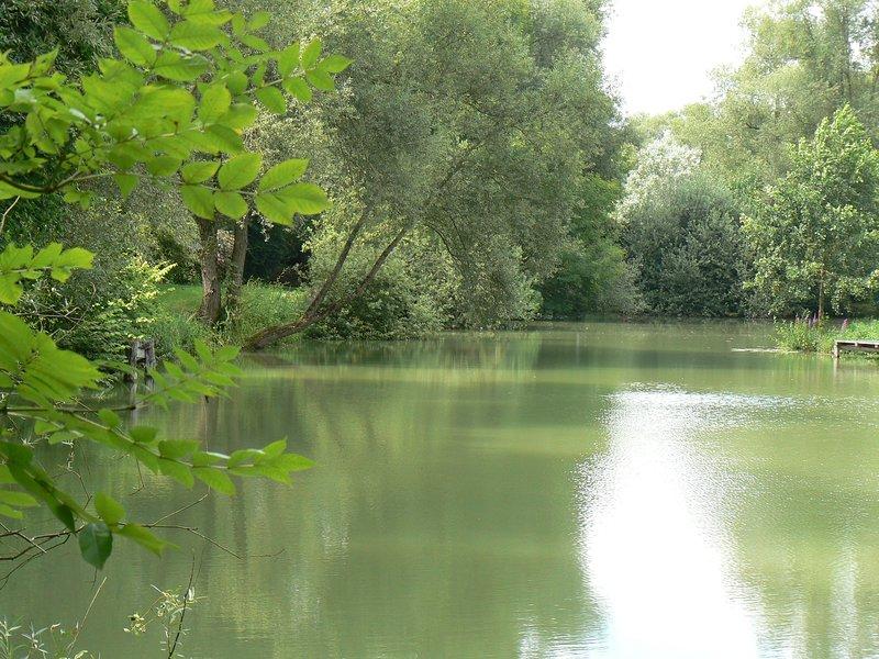 gîte à la maison de l'étang, holiday rental in Chaumont-sur-Aire