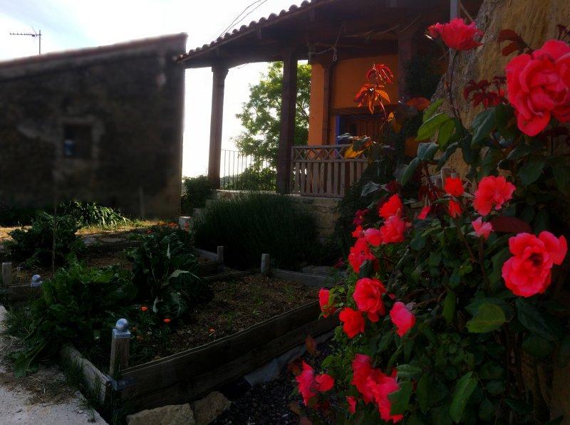 Vista del porche de la casa desde el rosal de la entrada