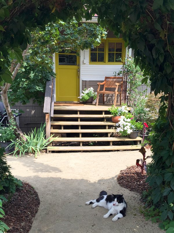 Just Up the Steps to the Bungalow Guest Suite. Theo the Cat Stays Outside But May Greet You.