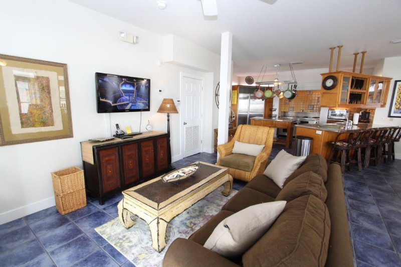Living Room Seating Area 2 - Queen Sleeper & TV