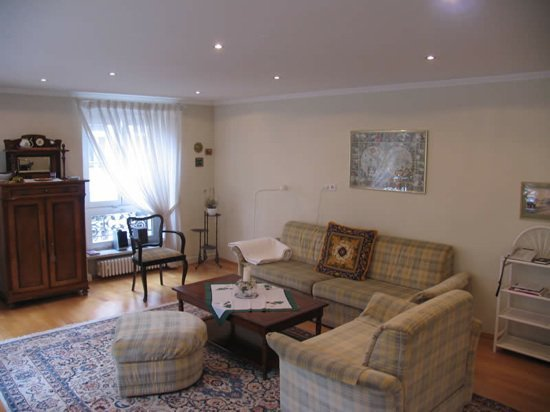 LLAG Luxury Vacation Apartment in Baden Baden - spacious, nice, clean (# 256) #256
