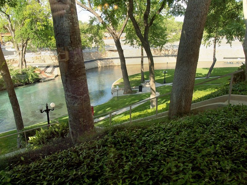Comal River 313-View from Livingroom Window