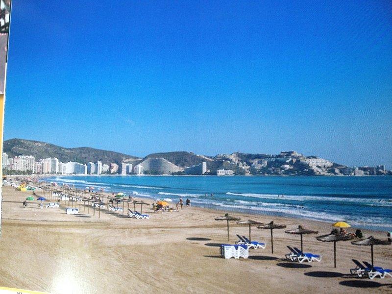The bay white sand beach