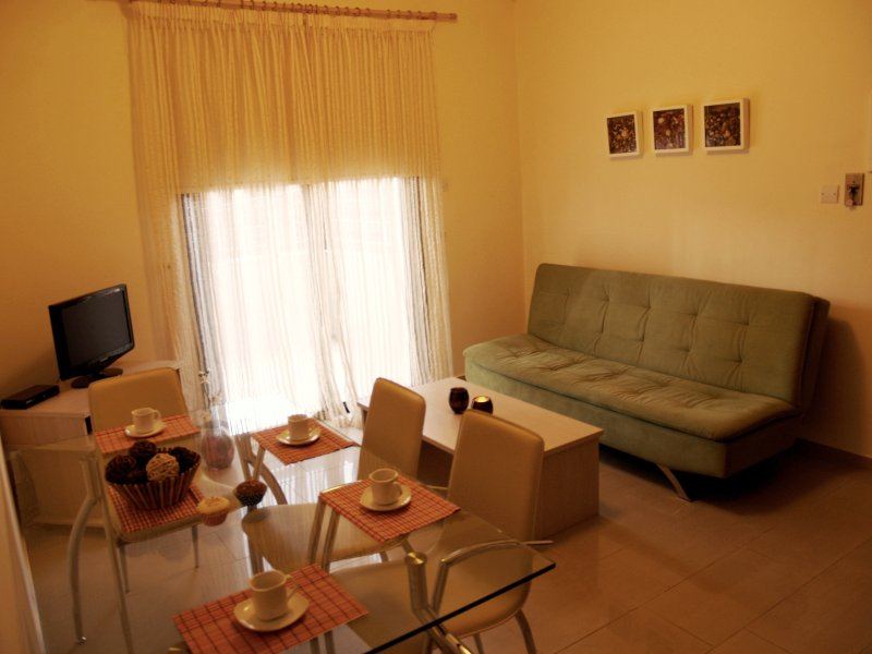 Dining and Living Areas of the Apartment