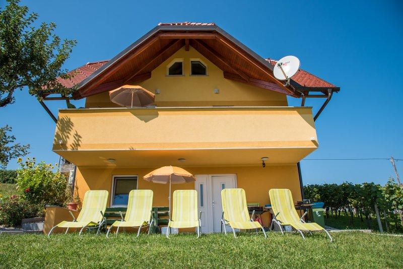 Apartments Vinska Trta - Studio with terrace (App 2+1)