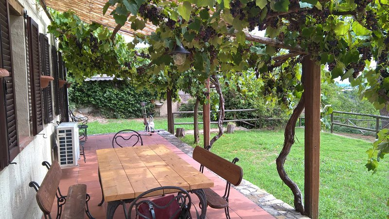 Terracotta House, holiday rental in Capalbio