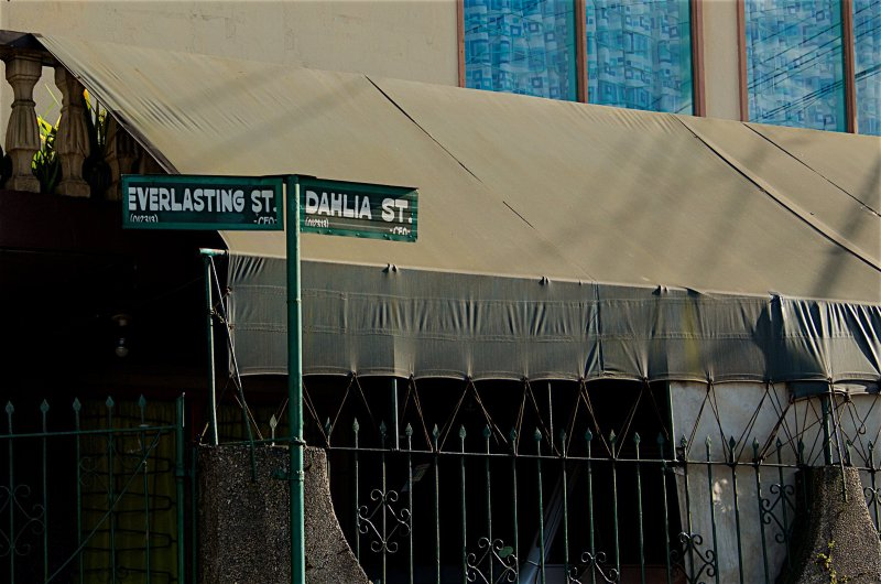 Dahlia St. Corner Everlasting St.