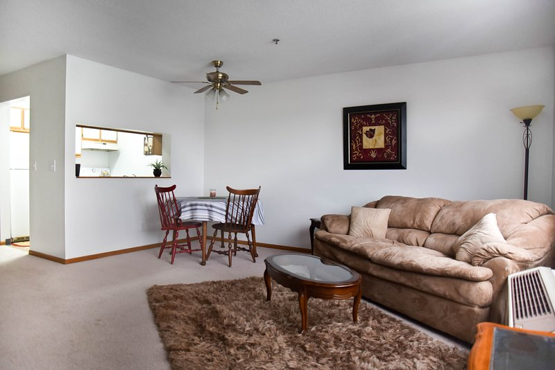 Easy and Fun Downtown Rental, holiday rental in North Liberty