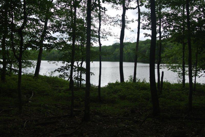 Tamiment lago en la propiedad