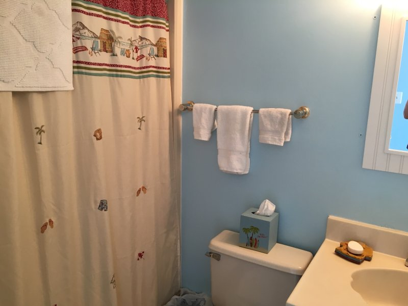 En-suite bath in  3rd floor master suite, includes freshly laundered towels and bath mat