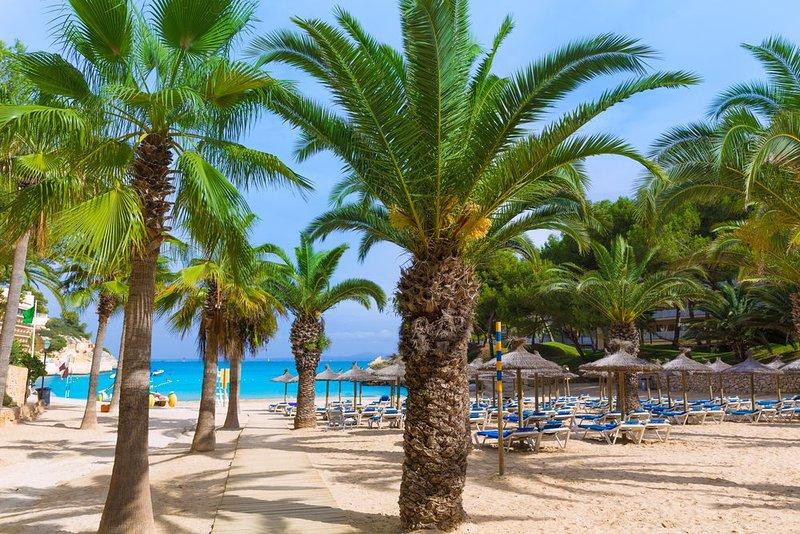 Playa de Vinyes