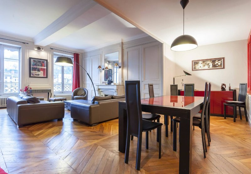 Beautiful appartement on the river side. 5 bedrooms, for 11 people., vacation rental in Ecully