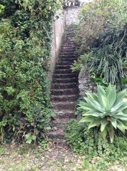 Trappor i trädgården