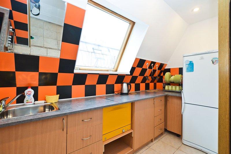 Pushkinskaja 10 Mansarda Redecoreted and spacious, holiday rental in St. Petersburg