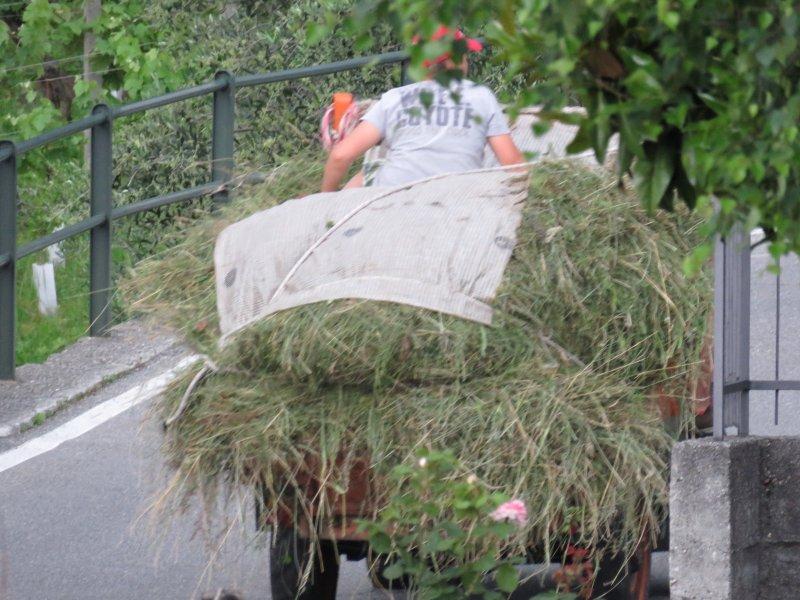 Village life: watch the locals work in traditional ways