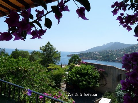 Amazing studio with sea view & Wifi, holiday rental in Théoule sur Mer
