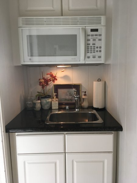 Hall wet-bar with Microwave and disposal
