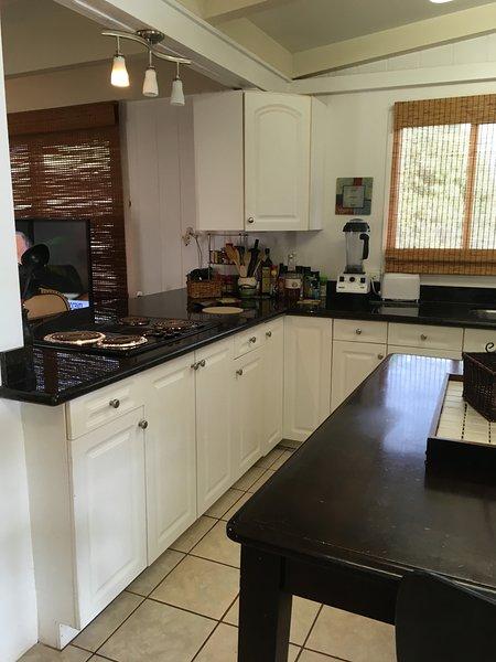 Jenn Aire cook-top, small appliances, coffeepot, teapot, blender, toaster/toaster-oven, mixer, etc