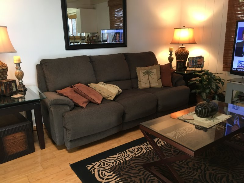 Living room couch, 60'TV, Air conditioner.
