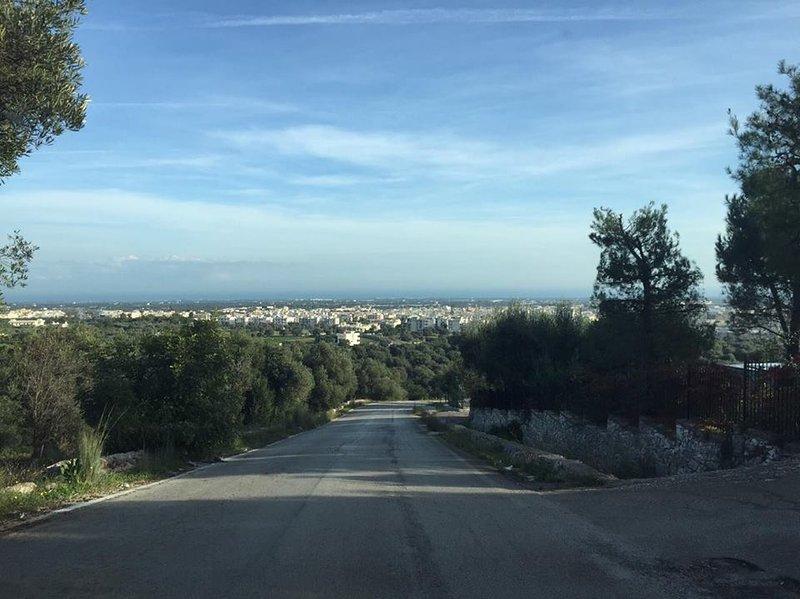 View of the city of Fasano from Selva di Fasano