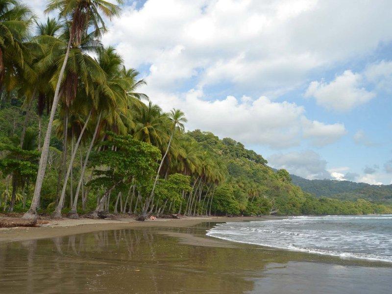 Nos clients bénéficient de l'utilisation de la belle plage avec nos membres dans les environs Beach Club